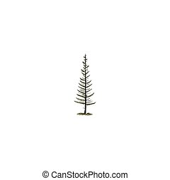 Hand sketched tree in silhouette monochrome style. Stock Vector pine tree symbol, illustration isolated on white background.