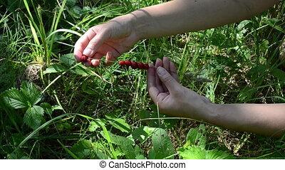 hand swing strawberry