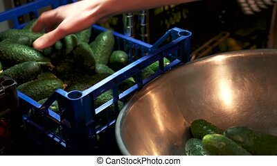 Hand taking cucumbers from crate. Fresh green vegetable.