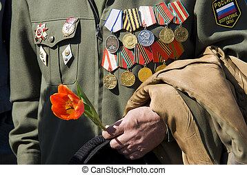 hand, van, oorlogsveteraan, met, tulp