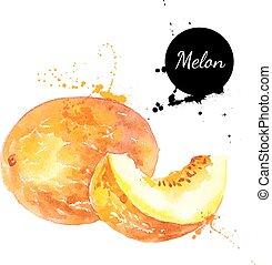 hand, vattenfärg, bakgrund, melon, oavgjord, vit, målning