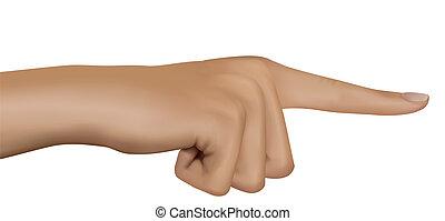 hand, vector., finger., wijzende