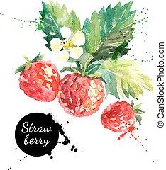 hand, watercolor, aardbei, achtergrond, getrokken, witte , schilderij