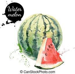 hand, watercolor, watermeloen, achtergrond, getrokken, witte...