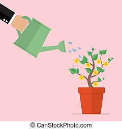 Hand watering money plant