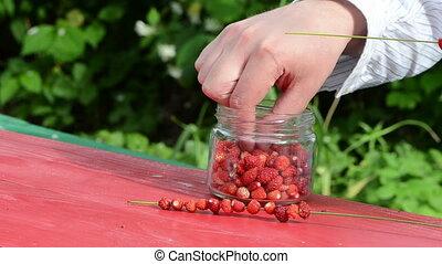 hand wild strawberry fast