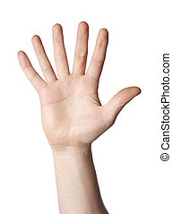 Hand with 6 fingers on white background