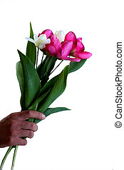 hand with a bouquet of flowers isolated on white background