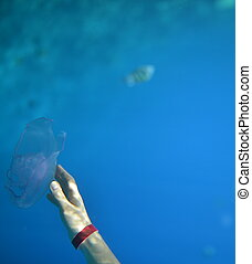 Hand with a jellyfish