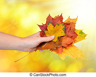 hand with autumn leaves
