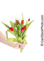 Hand with bunch of tulips
