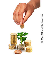 Hand with coin and plant.