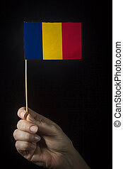 Hand with flag of Chad
