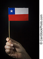 Hand with flag of Chile