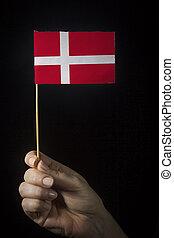 Hand with flag of Denmark