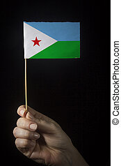 Hand with flag of Djibouti