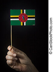 Hand with flag of Dominica