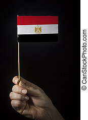 Hand with flag of Egypt