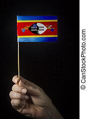 Hand with flag of Eswatini