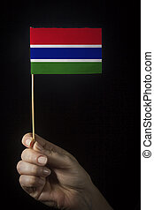 Hand with flag of Gambia