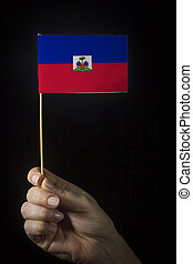 Hand with flag of Haiti