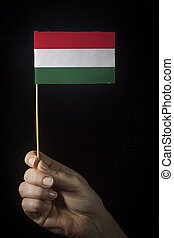 Hand with flag of Hungary