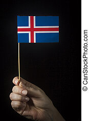 Hand with flag of Iceland