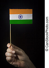 Hand with flag of India