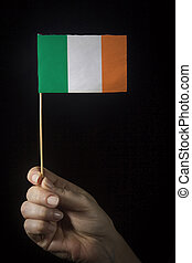 Hand with flag of Ireland