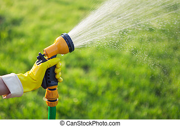 Hand with garden hose watering plants