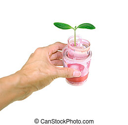 hand with green plant grow rmb money