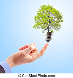Hand with lamp and tree. Concept of renewable energy