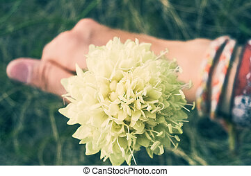 hand with  one flower