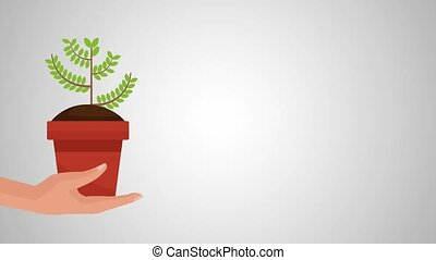 hand with plant of bitcoin ecommerce animation
