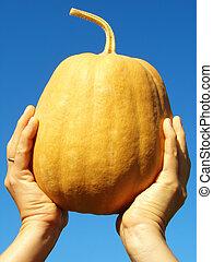 hand with pumpkin