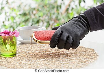 Hand with purse - A robber's hand holding an expensive purse
