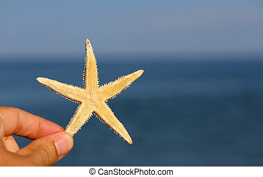 hand with the white starfish and sea in the background