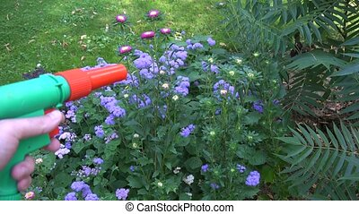 Hand with water hose nozzle tool watering flower bed in...