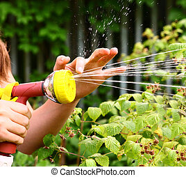 hand with watering pipe on the green garden background