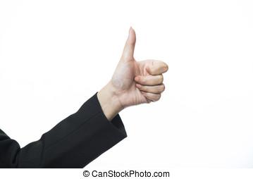 hand, witte achtergrond, vrijstaand, zakelijk