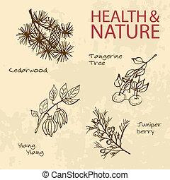Handdrawn Illustration - Health and Nature Set. Labels for...