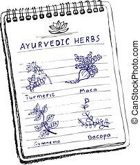 Handdrawn set - Ayurvedic Herbs. Turmeric, Maca, Gymnema,...