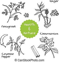 Handdrawn Set - Health and Nature