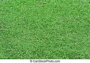 handeel gras af, groene, achtergrond.