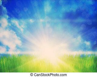 handeel gras af, zonnig