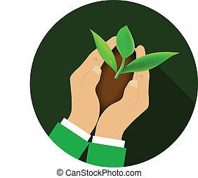 handen, plant., vasthouden, jonge