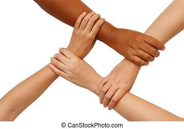 handen, vasthouden, multiracial, coördinatie, hand, eenheid