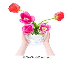 handen, vrouw, bloemen, vasthouden, vaas