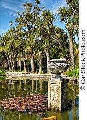 handflächen, in, logan, botanische gärten