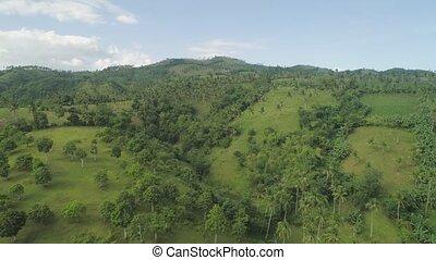 handflächen, und, landwirtschaftlich, land, in, der, bergig,...